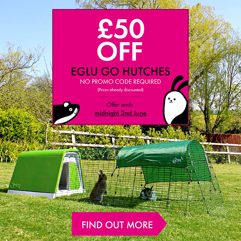 en-eglu-hutch-50-off-banner-varients_homepage-mobile