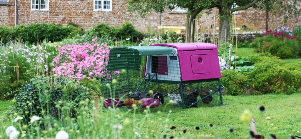 Et Eglu hønsehus i en nydelig, grønn hage