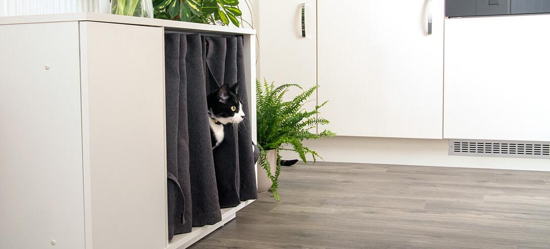 En svart og hvit katt som titter ut mellom gardinene i sitt Maya Nook kattehus