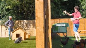 To naboer, der den ene har et hønsehus av tre, og den andre har et Eglu-hønsehus fra Omlet