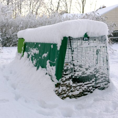An Eglu coop covered in the snow