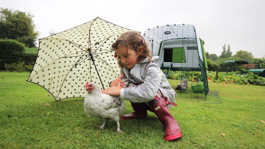Et barn som klapper en høne, sittende på huk under en paraply.