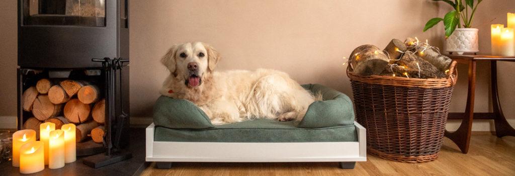 En hund som koser seg i hundesofaen sin, oppå en bolster-hundeseng.