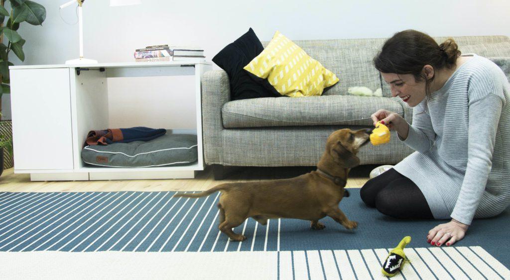 En dame som leker med dachshunden sin. I bakgrunnen er Omlets Fido Nook, det perfekte hundehuset for innendørs bruk.