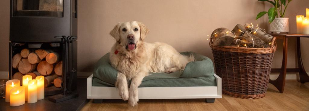 En glad retriever som ligger komfortabelt på en Bolster-hundeseng sammen med Fido sofaramme.