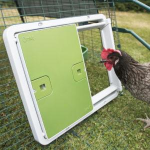 Her er Autodoor fra Omlet montert på luftegården av et Eglu hønsehus, der hønene er frittgående i hagen på dagtid.