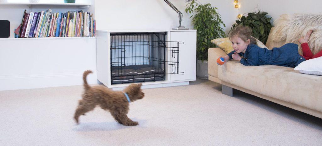 Et lite barn ligger på sofaen og kaster en ball til den lille hunden sin med lyseblått halsbånd og brun, krøllete pels. I bakgrunnen ser man hundeburet Fido Nook fra Omlet.
