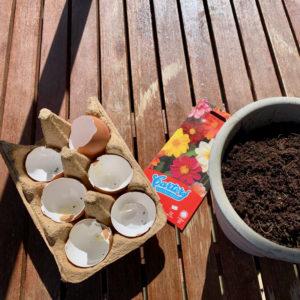En eggekartong med 6 halvdeler av eggeskall, en potte jord og en pakke frø liggende på terassen i mørkt treverk.