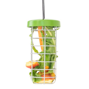 Caddi godbitholder er den perfekte måten å gi gnagerne dine mer frukt og grønnsaker i hverdagen, samtidig som buret holdes rent og matsvinn reduseres.