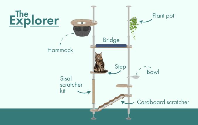The Explorer Freestyle starter kit