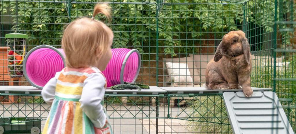 Kind met konijn in een Omlet Zippi speelren