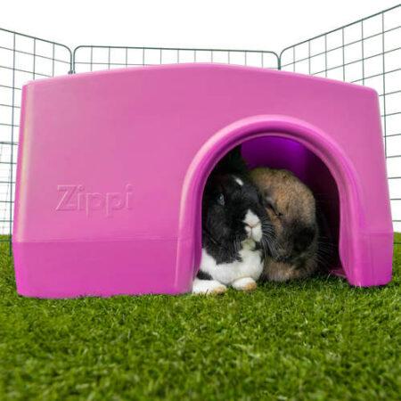 twee konijnen schuilen in een paars schuilhuisje in een ren